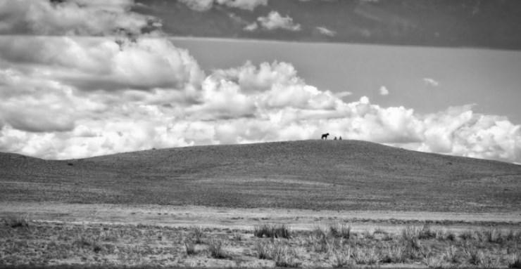 vignette-Mongolie-le-pays-du-Grand-Ciel