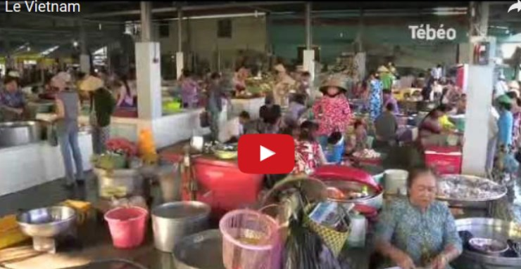 vignette-Vietnam
